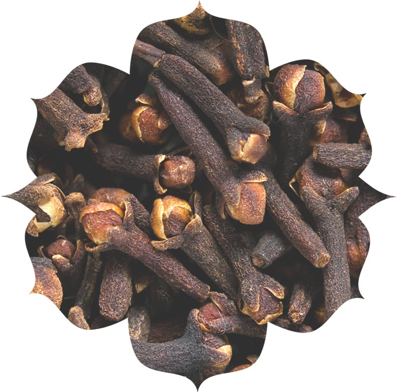Clove flower oil ingredient in skincare