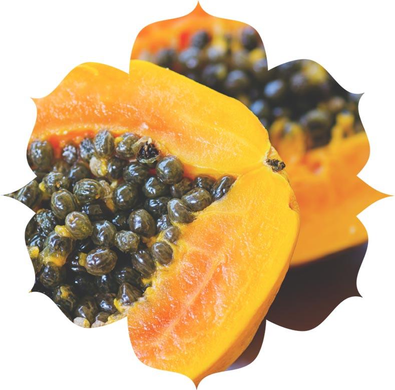Papaya ingredient in urban veda skincare