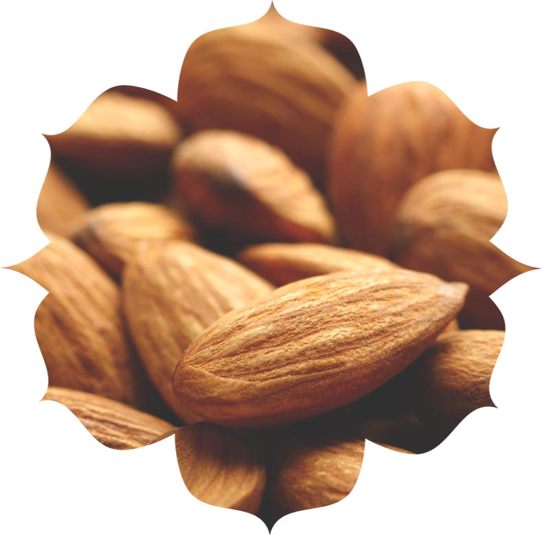 Sweet almond ingredient in urban veda skincare