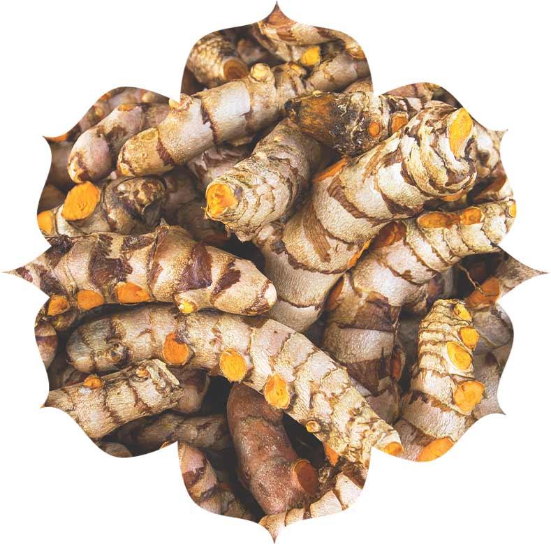 Image of Urban Veda Ingredients Turmeric