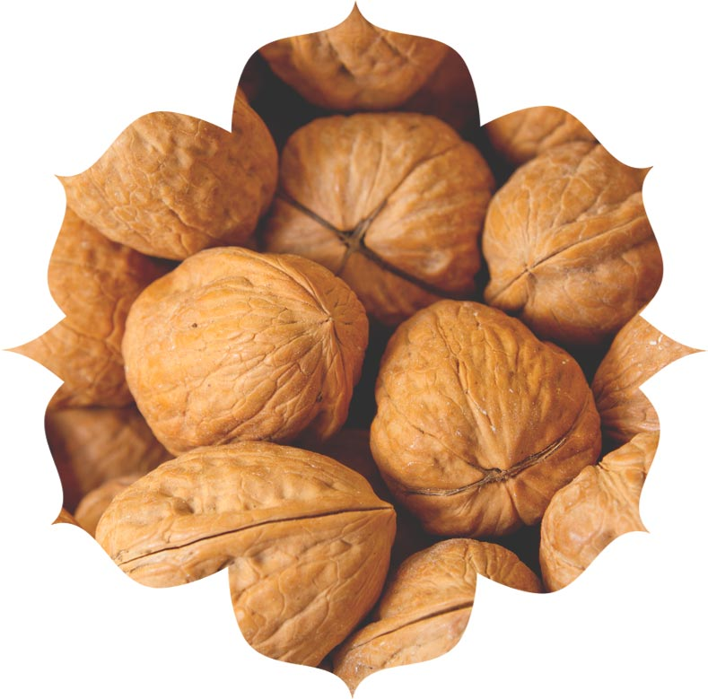Walnut shell powder ingredient in skincare