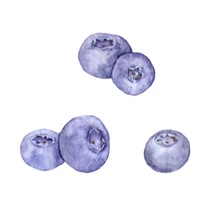 boosting blueberries