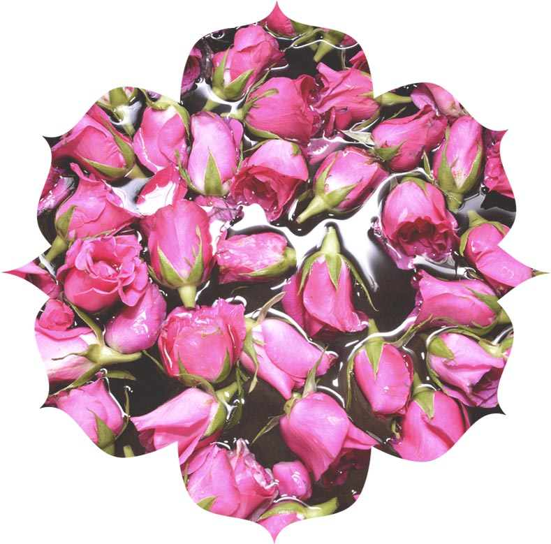 Rose Damask flower water in skincare