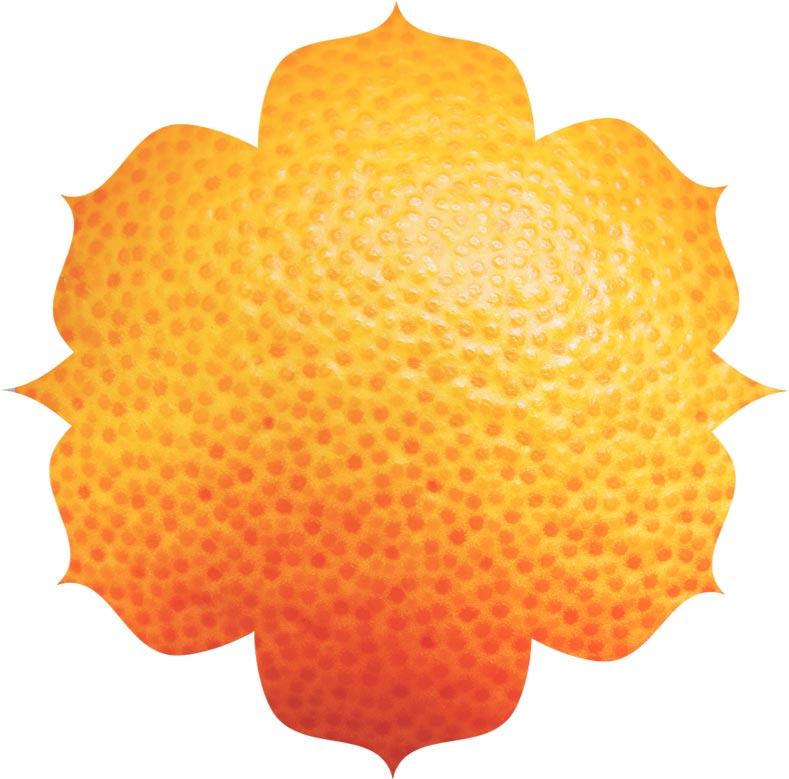 Vitamin C ingredient in urban veda skincare